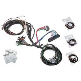 Marvelous Kit Car Wiring Loom Uk Basic Electronics Wiring Diagram Wiring Cloud Hisonuggs Outletorg